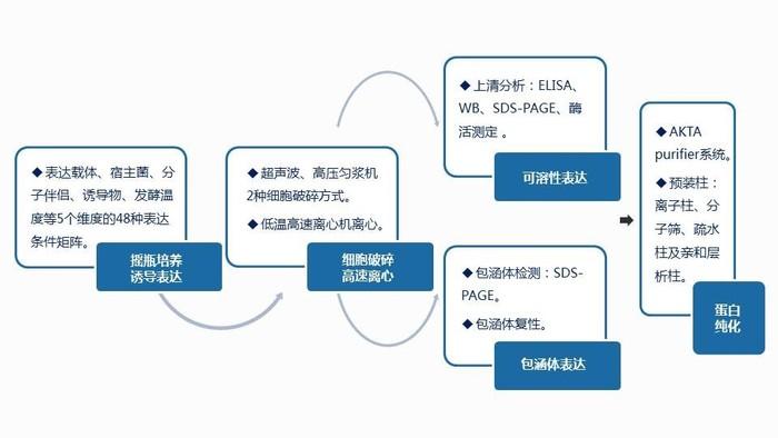 大規模發酵服務平臺.jpg