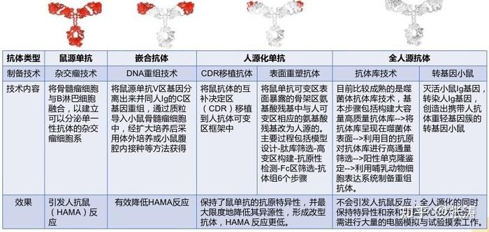 抗體人源化服務.1.jpg