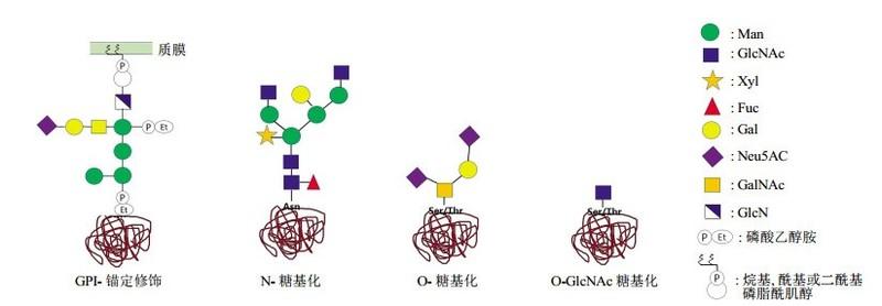 GPI錨定服務.2.jpg
