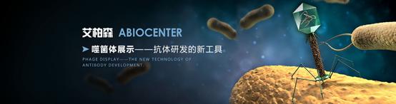 噬菌體展示平臺