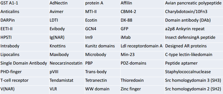 工程化骨架蛋白文庫構建;Engineered Protein Scaffold Library Construction Service