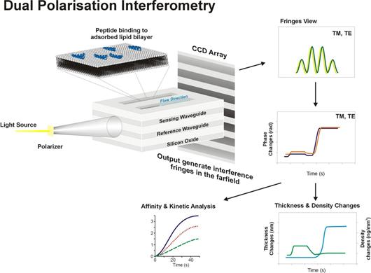 雙偏振極化干涉測量服務, DPI