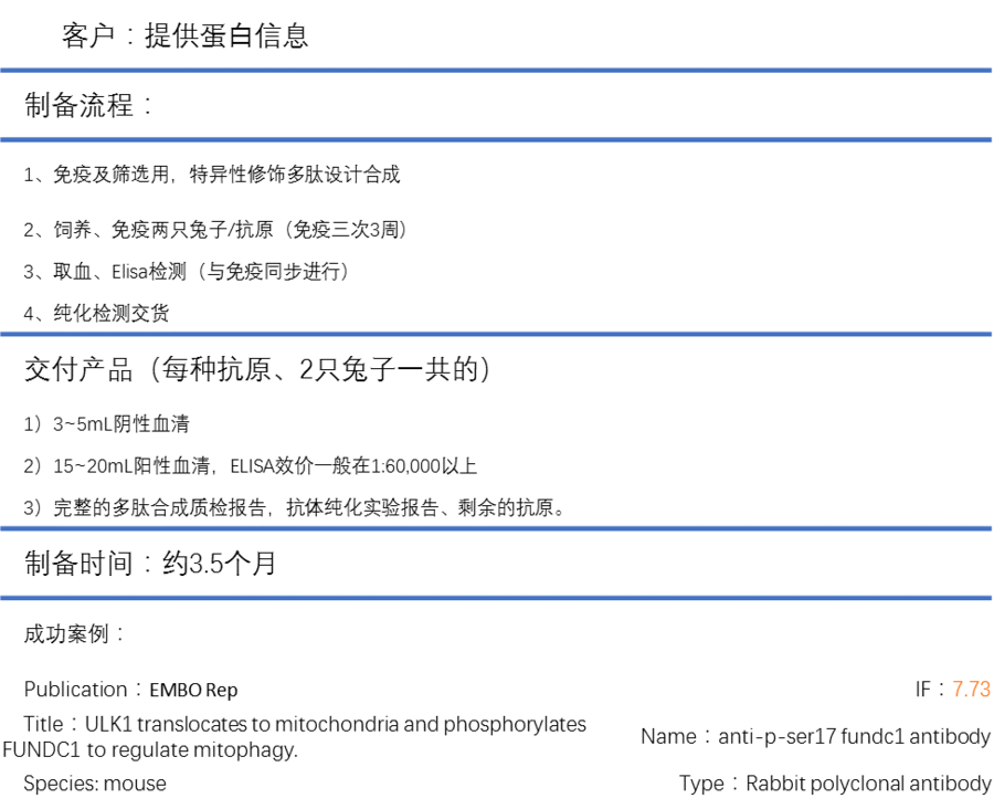 轉錄后特殊修飾結構識別抗體制備(Custom Antibody Services for Post-translational Modification Specific Antibody Discovery)