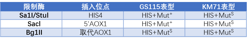 酵母蛋白表達系統;Protein Expression in Yeast